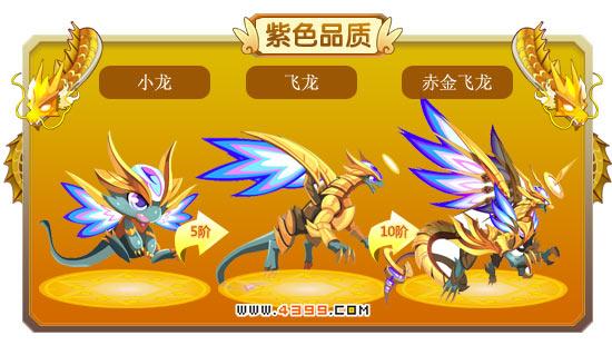 龙斗士小龙-飞龙-赤金飞龙进化图鉴 属性