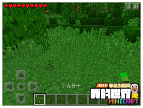 我的世界手机版小麦种子