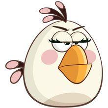 愤怒的小鸟2小白