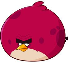 愤怒的小鸟2大红