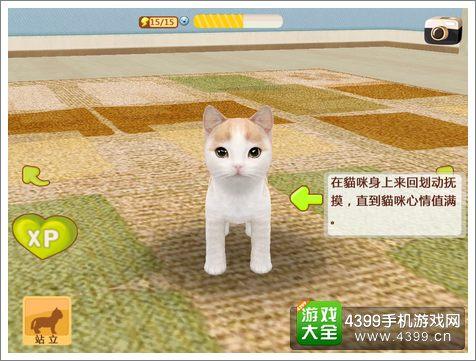 心动小猫好玩吗