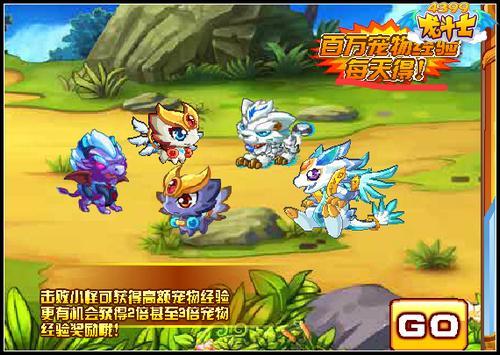 龙斗士宠物训练营