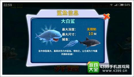 饥饿的鲨鱼大白鲨