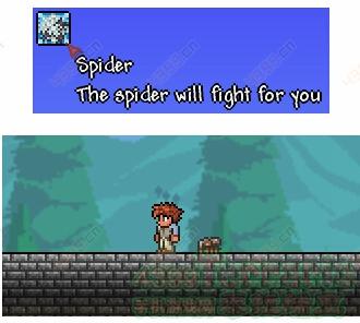 泰拉瑞亚蜘蛛法杖