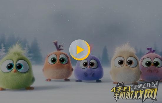 《愤怒的小鸟》曝新预告:五只雏鸟献唱圣诞歌 萌翻了