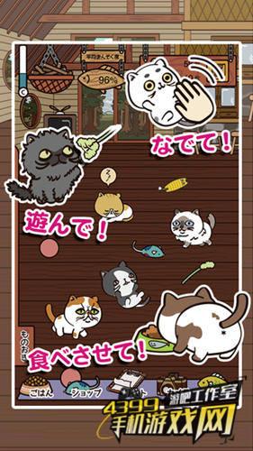 《忙碌猫咪店》