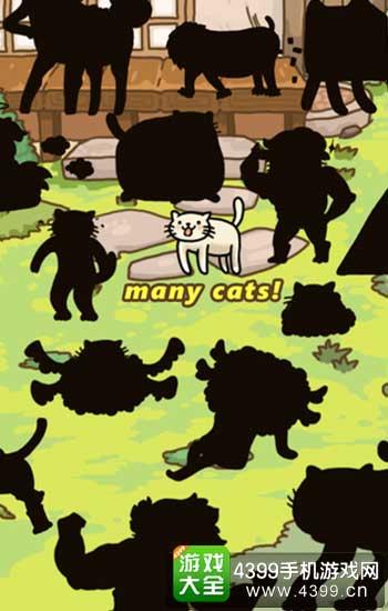 猫的进化世界3