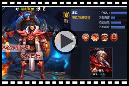 王者荣耀张飞视频