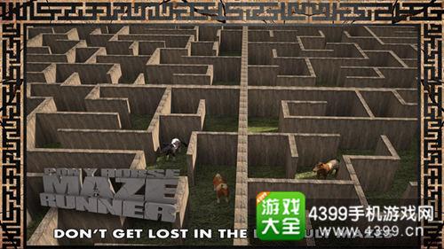 《小马闯迷宫3D》