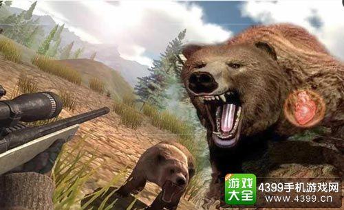 狩猎野生动物