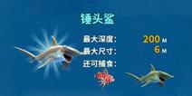 饥饿鲨:进化锤头鲨任务翻译和奖励一览
