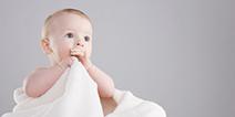 培育放置游戏《豆腐宝宝》这么可爱,怎么可以吃?