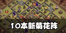 部落冲突10本菊花阵