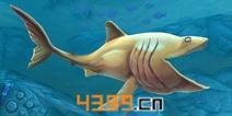 饥饿鲨世界3D姥鲨