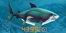 饥饿鲨世界3D大白鲨