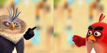 《愤怒的小鸟冲冲冲》村庄玩法揭秘 教你如何搜刮民膏