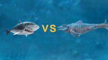 饥饿鲨:进化巨齿鲨和史前苍龙哪个更厉害