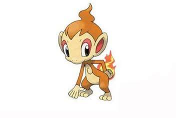 《口袋之旅》5月签到宠物小火猴属性介绍