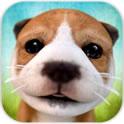 《小狗模拟器》试