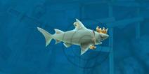 饥饿鲨进化礁鲨贝壳 礁鲨贝壳位置分享
