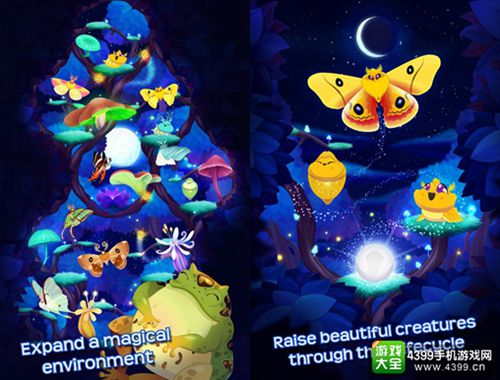 蝴蝶之星夜上架
