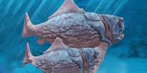 饥饿鲨进化邓氏鱼贝壳 邓氏鲨贝壳位置分享
