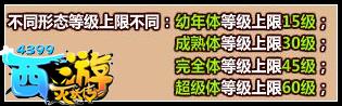 西游灭妖传宠物进化系统介绍