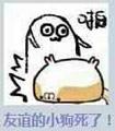 奥奇传说9月9日精灵大爆料