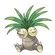 口袋妖怪重制椰蛋树怎么样
