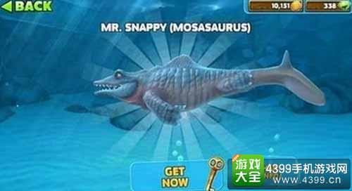 饥饿鲨:进化沧龙