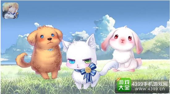 激萌可爱组:狗狗、猫咪、兔子 毛茸茸,圆滚滚的萌物组合,看着这些胖乎乎的小家伙,你是不是也忍不住想要去摸一摸它们了呢?金黄色的小金毛摇着卷翘的小尾巴,圆圆的蓝色眼睛里是清澈单纯的光芒,;白色的小猫有着如雪的毛色,异色的瞳孔里泛着不屑。这副高高在上的傲娇姿态,与它圆绒的外表形成的反差萌看的人心都要融化了;小兔子耷拉着长耳朵,粉白渐变的蓬松绒毛和红红的眼睛,让它看上去更加柔软可爱。