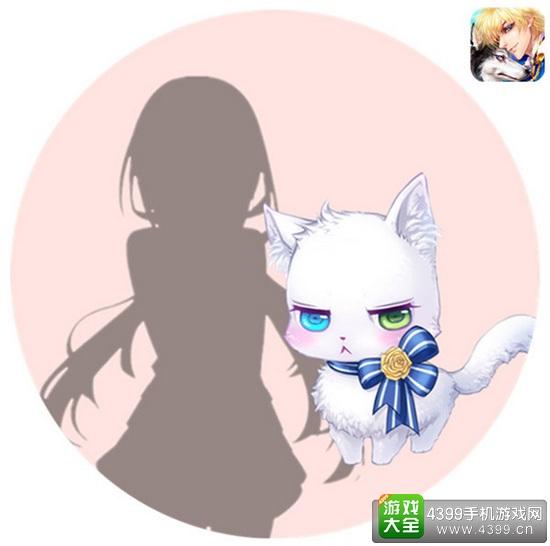 恋人之森猫咪奥狄斯