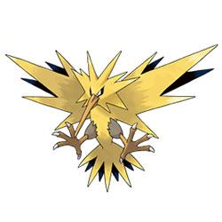 口袋妖怪VS闪电鸟