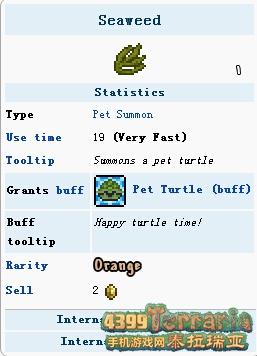 泰拉瑞亚海龟宠物