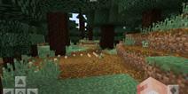 我的世界针叶林种子代码汇总