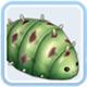 仙境传说ro绿棉虫卡片