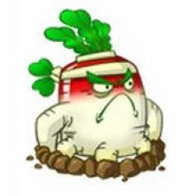 qq西游农场仙桃兑换_qq农场的仙桃_Qq农场最高等级_Qq农场金土地_Qq农场牧场 - www.iaidaw.com