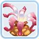 仙境传说ro守护永恒的爱海葵卡片