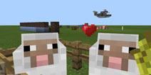 我的世界羊怎么繁殖