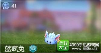 仙境传说ro手游蓝疯兔在哪 守护永恒的爱蓝疯兔怎么打