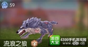 仙境传说ro守护永恒的爱流浪之狼 流浪之狼属性能力掉落图鉴