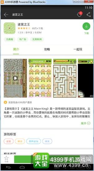 迷宫之王电脑版下载