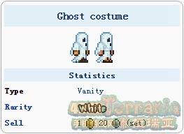 泰拉瑞亚鬼魂服装