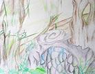 造梦西游4神兽森林