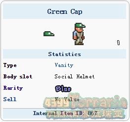 泰拉瑞亚绿帽子