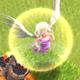 部落冲突5级天使