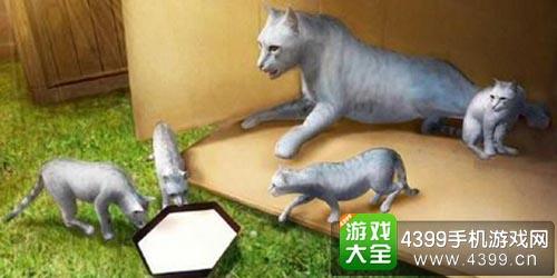 家猫模拟器 做个猫主子并不安逸