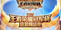 王者荣耀冠军杯比赛视频 2017冠军杯比赛视频汇总