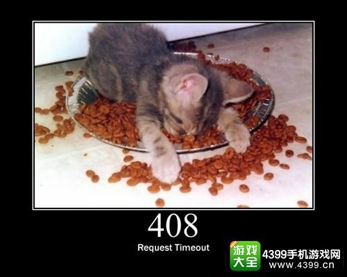 错误代码408