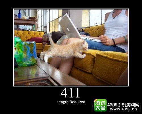 错误代码411
